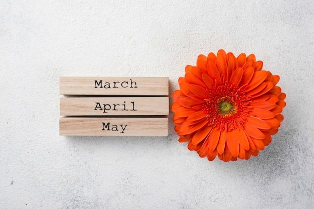 Fleur vue de dessus avec des balises de mois de printemps