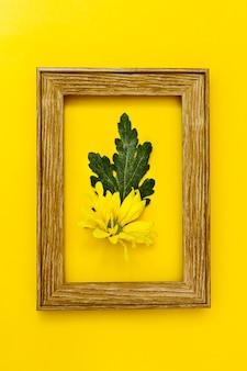 Fleur vue de dessus à l'intérieur du cadre