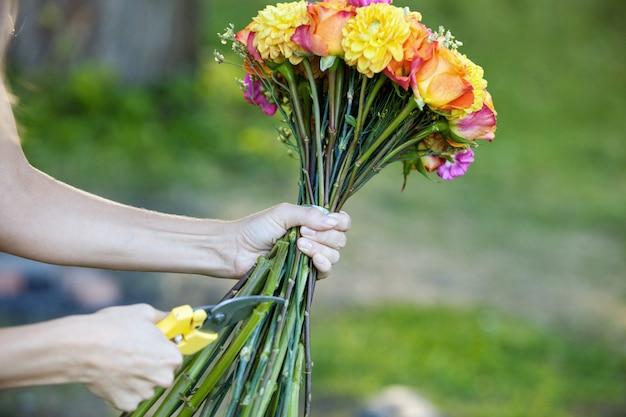 Fleuriste, couper, fleurs, tiges, gros plan, de, main féminine, à, cisailles