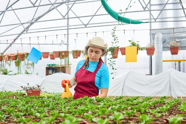Fleuriste de femme arrosant des usines d'intérieur dans le jardin d'hiver