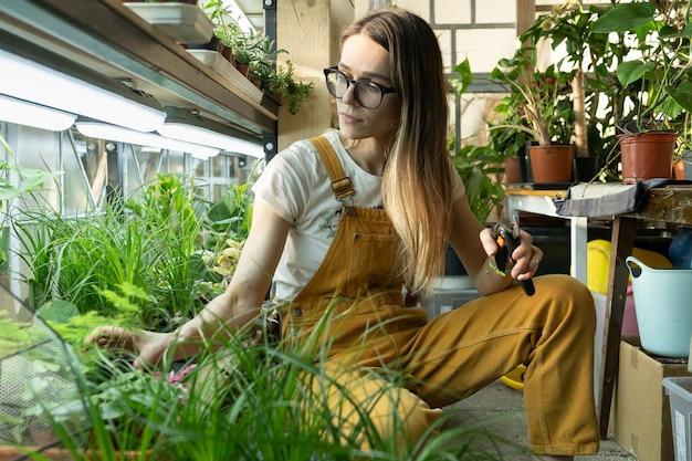 Fleuriste fille travaille en serre avec des plantes pour jardin
