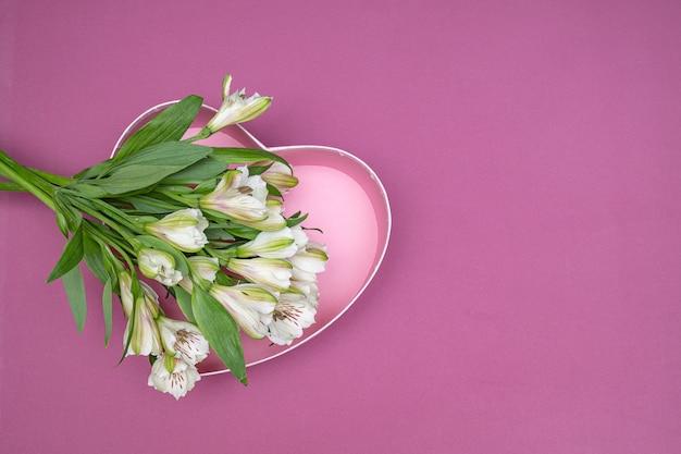 Fleurs d'alstroemeria blanches sur un fond violet et rose.
