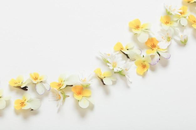 Fleurs d'alto sur fond blanc