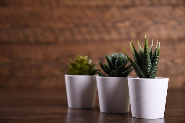 Fleurs artificielles herbe forme différente dans un pot sur fond en bois se bouchent avec copie espace et texte.