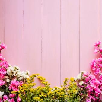 Fleurs aux couleurs vives sur rose