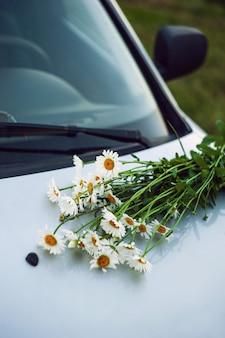 Fleurs de belle prairie sur le capot de la voiture en forêt