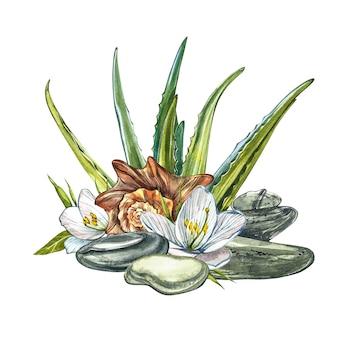 Fleurs blanches, coquillages, aloe vera et pierres de spa