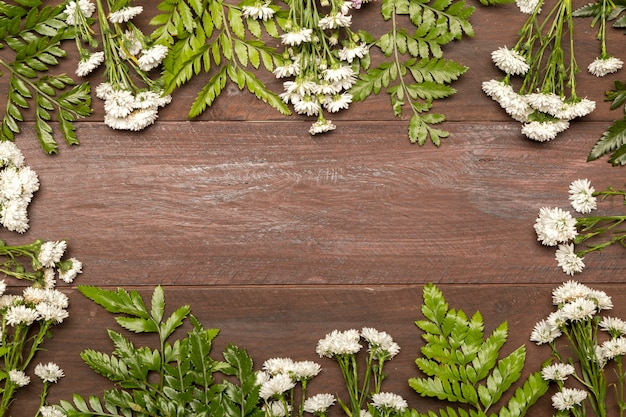 Fleurs blanches et feuilles vertes