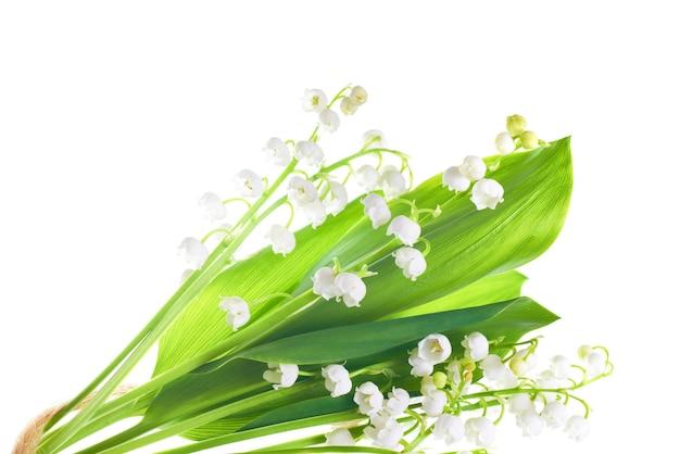 Fleurs blanches de muguet isolé sur fond blanc