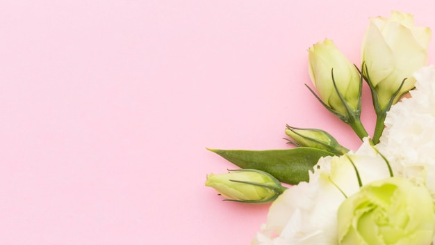 Fleurs blanches à plat avec espace copie