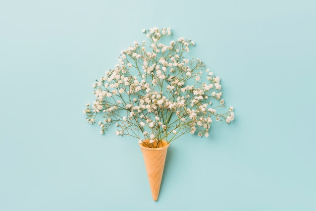 Fleurs blanches près du cône de gaufre