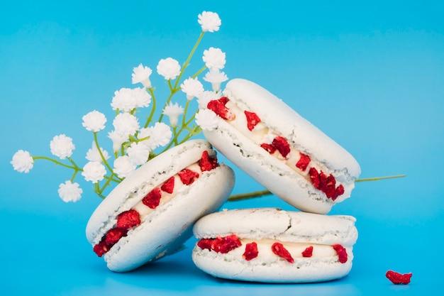 Fleurs blanches près des macarons sur fond bleu