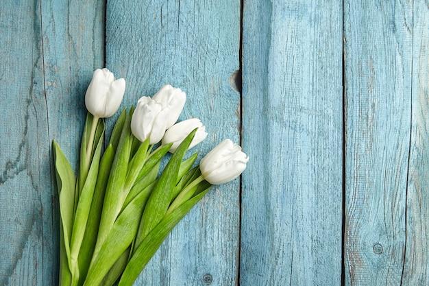 Fleurs blanches de tulipes printanières fraîches sur mur en bois bleu clair