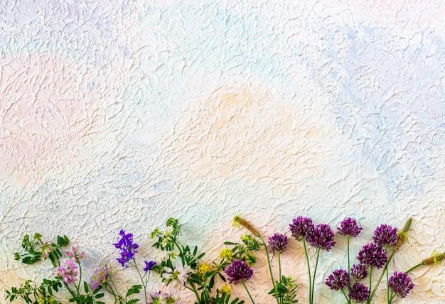 Fleurs sur un bleu rose blanc. concept minimal. créatif.