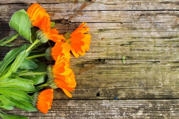 Fleurs de calendula sur le fond en bois
