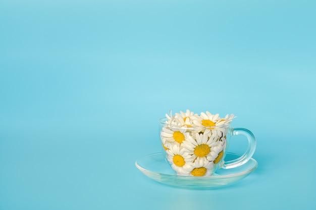 Fleurs de camomille dans une tasse en verre transparent