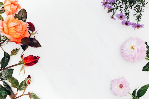 Fleurs colorées sur fond de marbre blanc