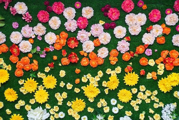 Fleurs colorées et l'herbe verte