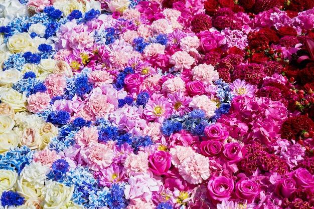 Fleurs colorées pour la texture.