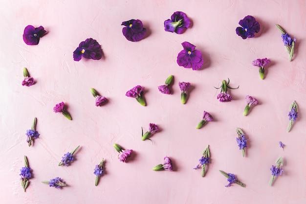 Fleurs comestibles violettes