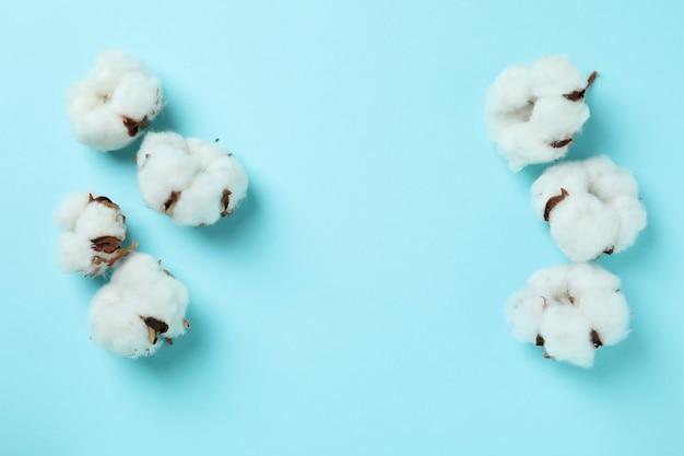 Fleurs de coton sur bleu
