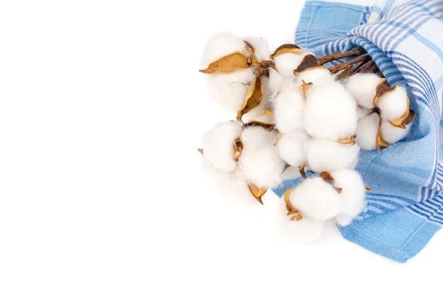 Fleurs de coton séchées sur tissu de coton