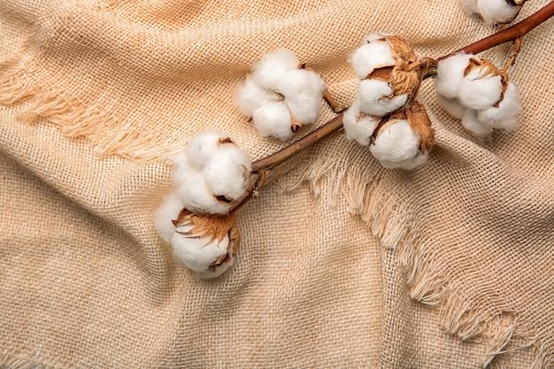 Fleurs de coton sur tissu, vue de dessus
