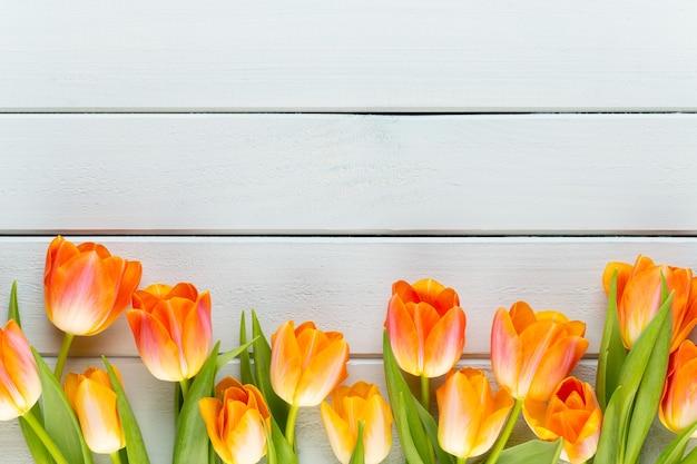 Fleurs de couleur pastel jaune sur fond jaune.en attendant le printemps. joyeuses pâques. mise à plat, vue de dessus. copiez l'espace.