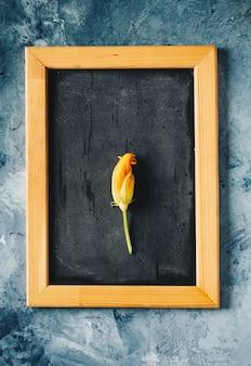 Fleurs de courgettes dans une passoire sur fond de béton
