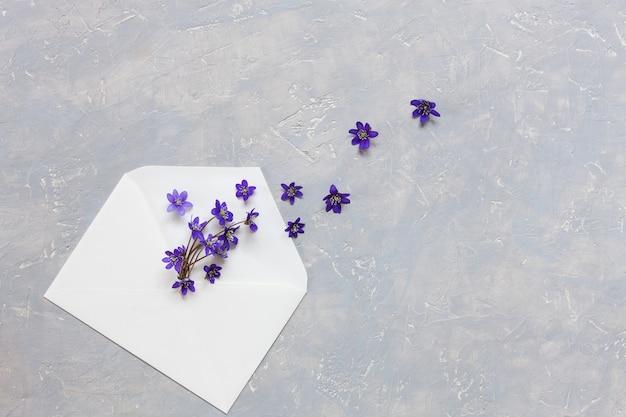 Fleurs dans une enveloppe