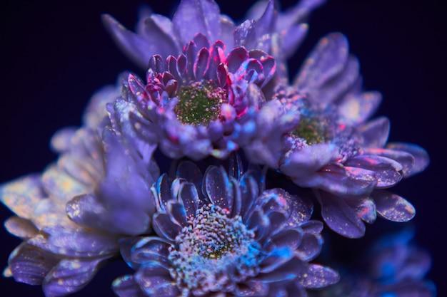 Les fleurs dans les gouttes de peinture brillent dans la lumière ultraviolette. cosmétiques de beauté naturels