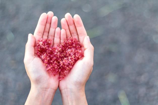 Les fleurs dans la paume de la main sont disposées en forme de cœur.