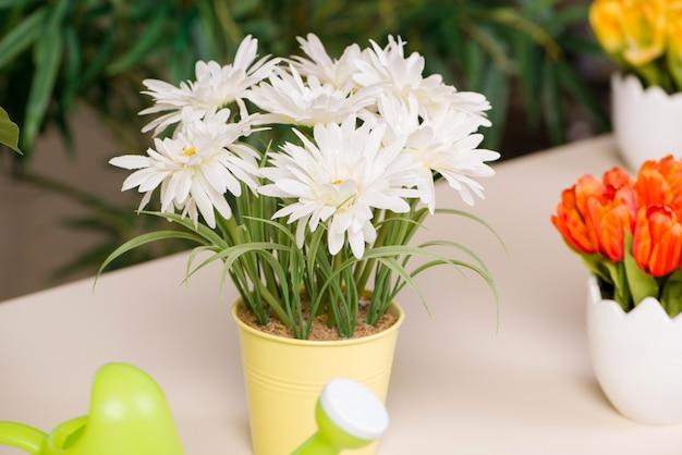 Fleurs dans le pot à la maison