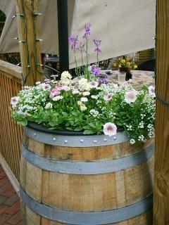 Fleurs dans un tonneau