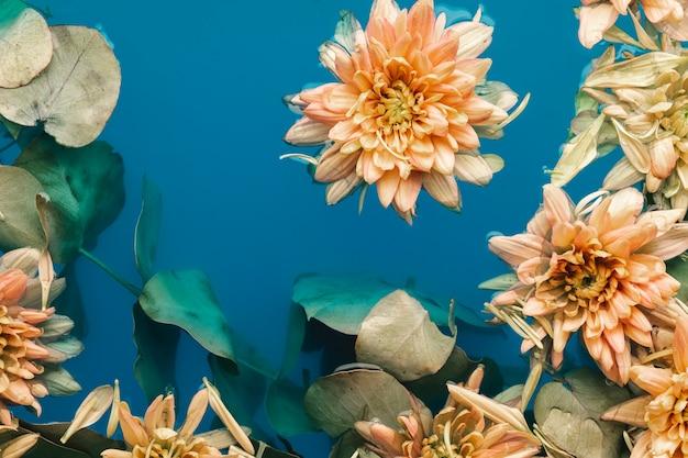 Fleurs délicates dans l'eau bleue