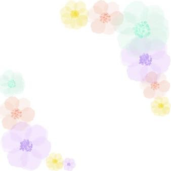 Fleurs douces sur blanc