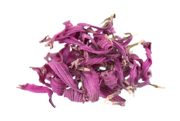 Fleurs d'échinacée séchées, isolées sur fond blanc. pétales d'echinacea purpurea. herbes medicinales.