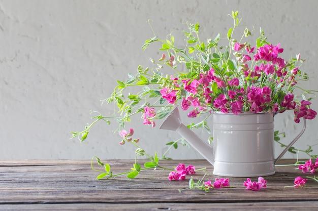 Fleurs d'été rose en arrosoir sur fond mur blanc