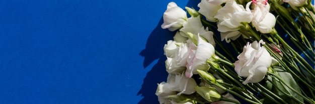 Fleurs d'eustoma rose blanc sur une surface bleue dans un style vintage. vue de dessus. fleur de lisianthus blanche. format de bannière pour les cartes d'invitation de mariage de félicitations.