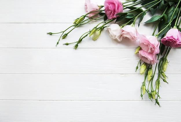 Fleurs d'eustoma roses fraîches
