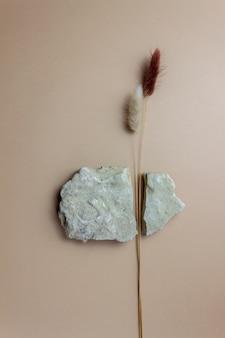 Les fleurs fendent la pierre. idée créative. concept. mise à plat.