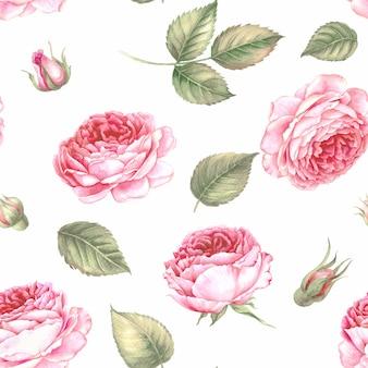 Fleurs et feuilles illustration aquarelle transparente.
