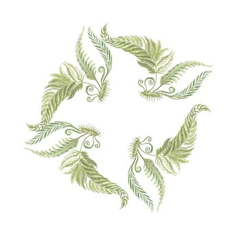 Fleurs fougère forêt plantes feuilles illustration aquarelle dessinés à la main