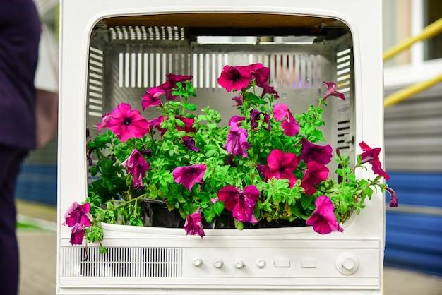 Des fleurs fraîches dans le cas d'un vieux téléviseur.