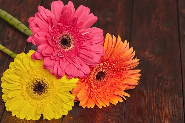 Fleurs de gerbera jaune, orange et rose