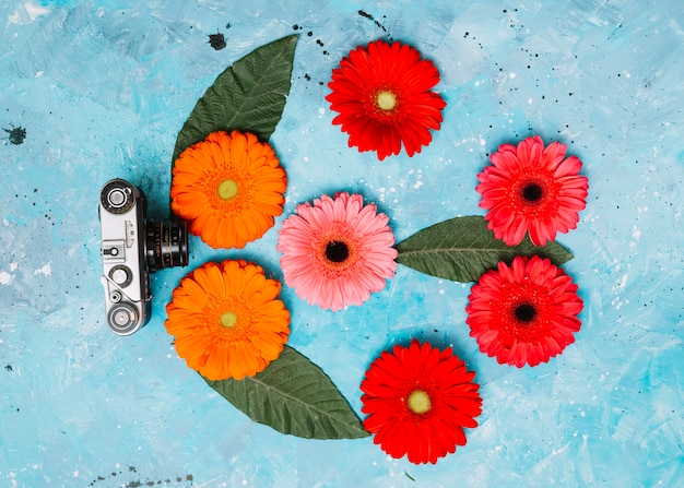 Fleurs de gerbera lumineux avec caméra sur la table