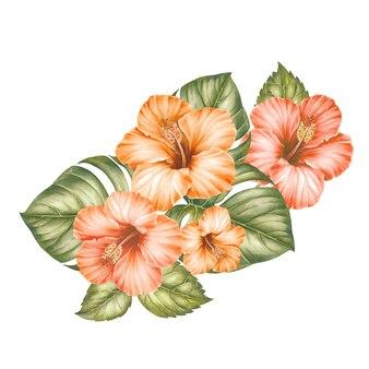 Fleurs d'hibiscus et feuilles de palmier