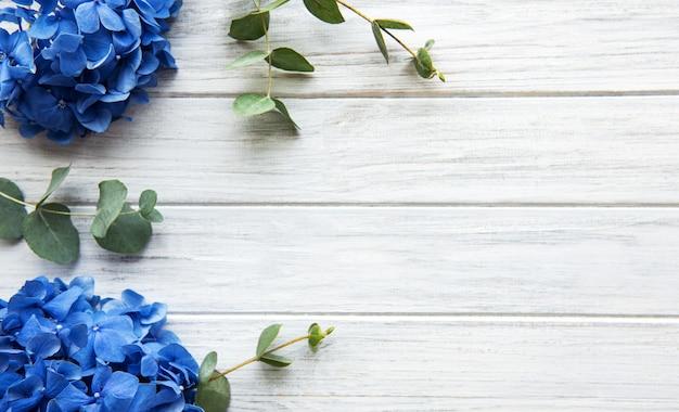 Fleurs d'hortensia bleu