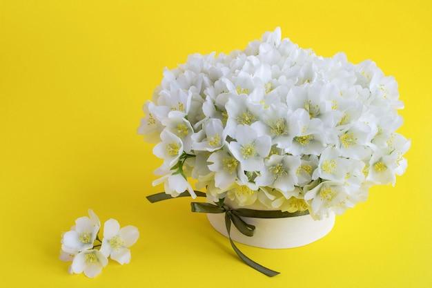 Fleurs de jasmin blanc dans la boîte cadeau sur fond jaune.
