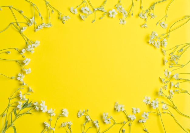 Fleurs sur jaune